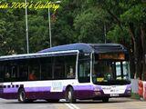 愉景灣巴士T9線
