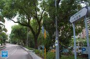 Ma Wo Road 20200730
