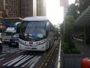 Shum Kong Wing Lee SX8360