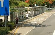 TaiPao-KwongFukEstate-South-6177