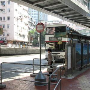 Tai Ho Road 20130211 N3.JPG