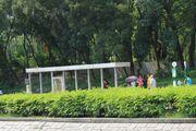 Tai Po Old Market Park