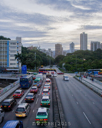 Tai Po Road - Yuen Chau Tsai(0602).JPG