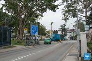 Fan Kam Road near Kam Tin Road 20190114