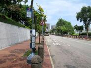 Yuen Long Park BT6 20180420