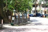 Tai Ning Street -201308