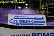Cruise Link