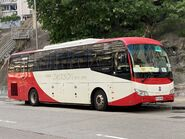 Jackson Bus TX3143 Precious Blood Primary School(Wah Fu Estate) school bus 19-06-2020