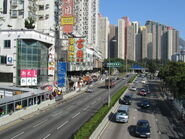Lung Cheung Road Shatin Pass Road