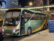 VA5211 Lung Wai Tour NR737 18-08-2021