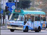 新界專綫小巴811線