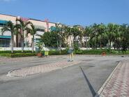 Royal Palms 1