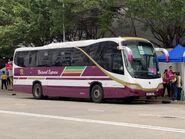 Natural Express NS302 MTR Free Shuttle Bus E99M 18-04-2021