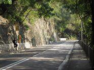 Broadwood Road Tai Hang 1