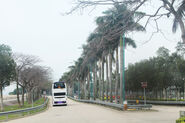 Sunny Bay Road 2