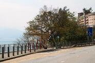 Ma Wan Pier-W1