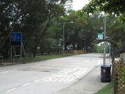 Cheung Sha Bridge 1