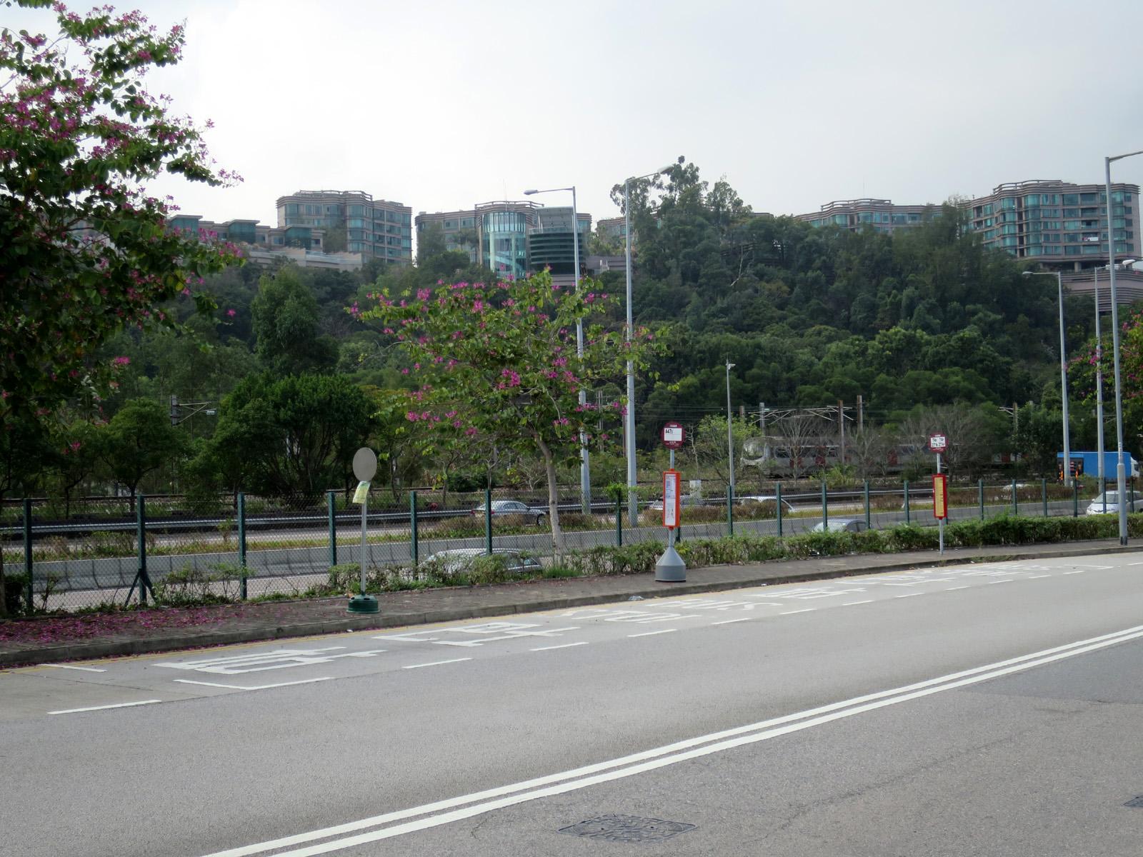 白石角 (創新路)