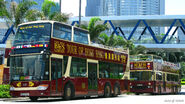 Big Bus AK FX5737 and Condor NR7153
