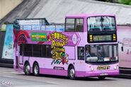 NWFB H1 1217 KN8036