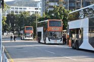 LWB A34 buses at Hung Yuen Road