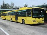 圖庫:皇巴士