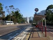 Po Shek Wu Road x2 20181004