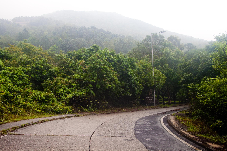 東涌道郊野公園