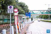 Ng Ka Tsuen Tung Wui Road 20170708 3