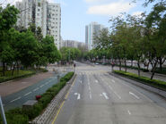 Pak Wo Road near SKPR 20180404