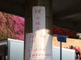 2014年雨傘革命集會特別交通安排/10月8日