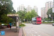 Tai Po Old Market Park 20160613