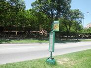 33 Seabird Lane@2013-06-30