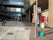 Shantung St SHS1 20181015