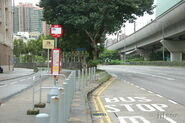 MaOnShan-HangFaiStreet-7297