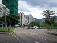Siu Lek Yuen Road Near STWR 20170727