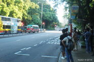 Pokfield Road, Pok Fu Lam Road