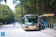 Tai Mo Shan Country Park 20161230