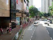 Pui Shing Road1 20170720