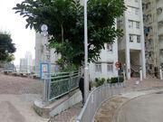 Tsui Chuk Garden2 20200227