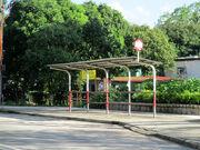 Ping Che Garden N2 20160715