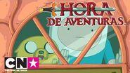 Hora de Aventuras Estaciones rana Primavera Cartoon Network