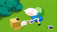 The Box Prince (3)