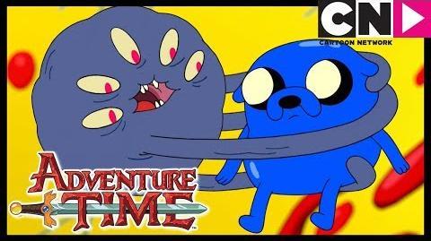 Jake El Niño Estrella Hora de Aventura LA Cartoon Network-2