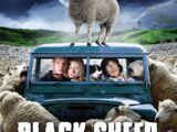 Black Sheep (2007)