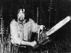 Джуниор Сойер в лесу