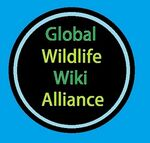 Global Wildlife Wiki Alliance.jpg