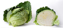 800px-Cabbage and cross section on white.jpg