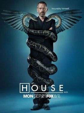 10825359-house-md.jpg