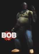 BobHOD2GuideArt